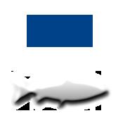 Рыба_импорт3